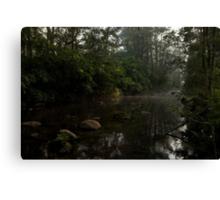 Kangaroo Valley - Peacefull Creek view 01 Canvas Print