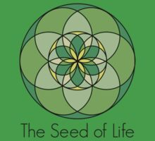The Seed of Life by love2Bloved
