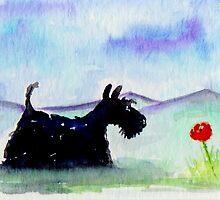 Scottie Dog 'Lone Poppy' by archyscottie