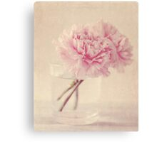 Textured Carnations Canvas Print