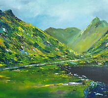 The Ring of Kerry by Conor Murphy
