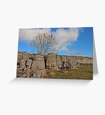 Strip of Limestone Pavement Greeting Card