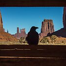 Bird in Monument Valley by Philip Kearney