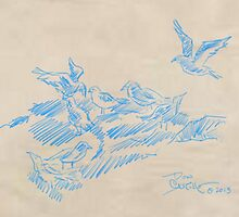 pencil blue 'sea birds' by DonLeeCastillo