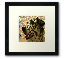 The magic of a dogs Christmas Framed Print