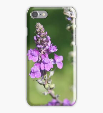 Macro Purple Flowers iPhone Case/Skin