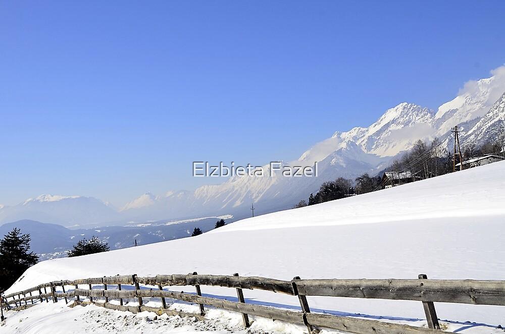 Alps by Elzbieta Fazel