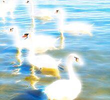 Swans - Energy by GeorgiKaram