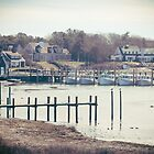 Wychmere Harbor, Cape Cod, Massachusetts by Elizabeth Thomas