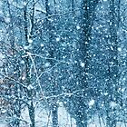Snow Falling II by Mary Ann Reilly