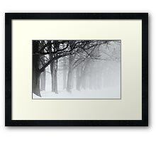 Black Limbs Framed Print