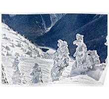 Ice trees 2 Poster