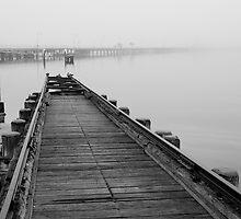 St Kilda Pier and 2 swans, Melbourne, Victoria, Australia by paulsborrett