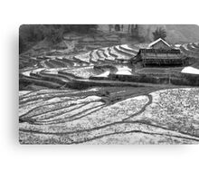 Sapa, Rice Terraces and House, Vietnam Canvas Print