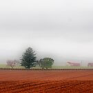 COUNTRY by abmay