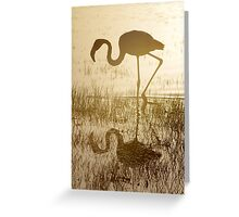Sunlit Reflection Greeting Card