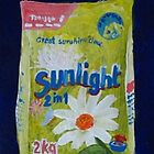 Sunlight 2 in 1 Washing Powder by Sonja Peacock