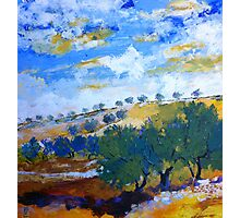 Beyond the hills of olive trees Photographic Print
