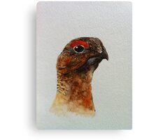 Grouse Watercolour Design  Canvas Print