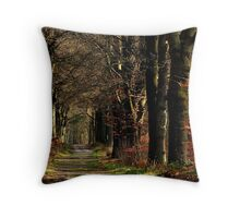 On the last Sunday of February 2014 Throw Pillow