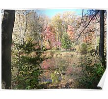 Autumn riches on Greenbelt Lake Poster