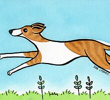 Leaping Greyhound by zoel