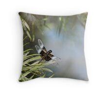 Black and Blue Widow Skimmer Throw Pillow