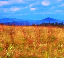 Foothill Flowers by Brian Gaynor