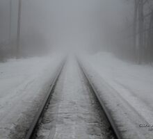 Foggy Tracks by Gilda Axelrod