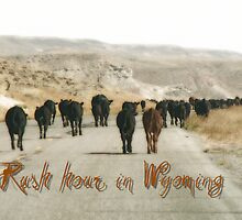 Rush hours in Wyoming by florencefraikin