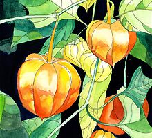 Chinese Lanterns by Esmee van Breugel