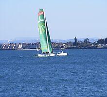 Harbor Island ~ San Diego, Califorinia by Marie Sharp