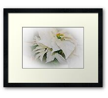 Christmas Purity Framed Print