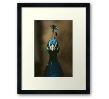 Peacock Front View Portrait Framed Print