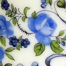 Blue Rose by shalisa