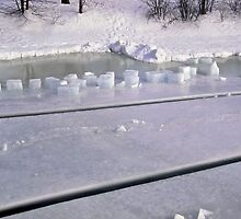 Rideau River Ice Cubes by Shulie1