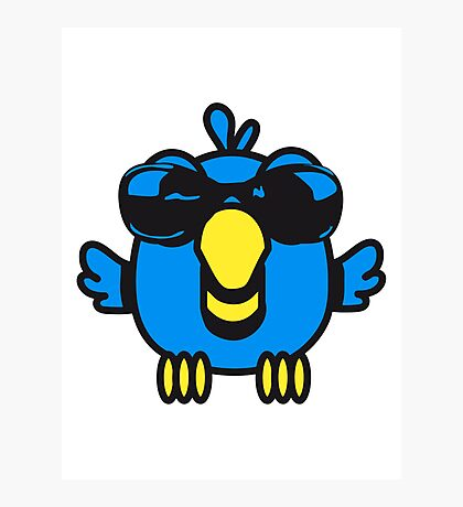 Bird funny birdie sunglasses cool comic Photographic Print