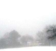 Winter Fog by Steven Torrisi