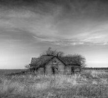 Abandoned by chrismartintv