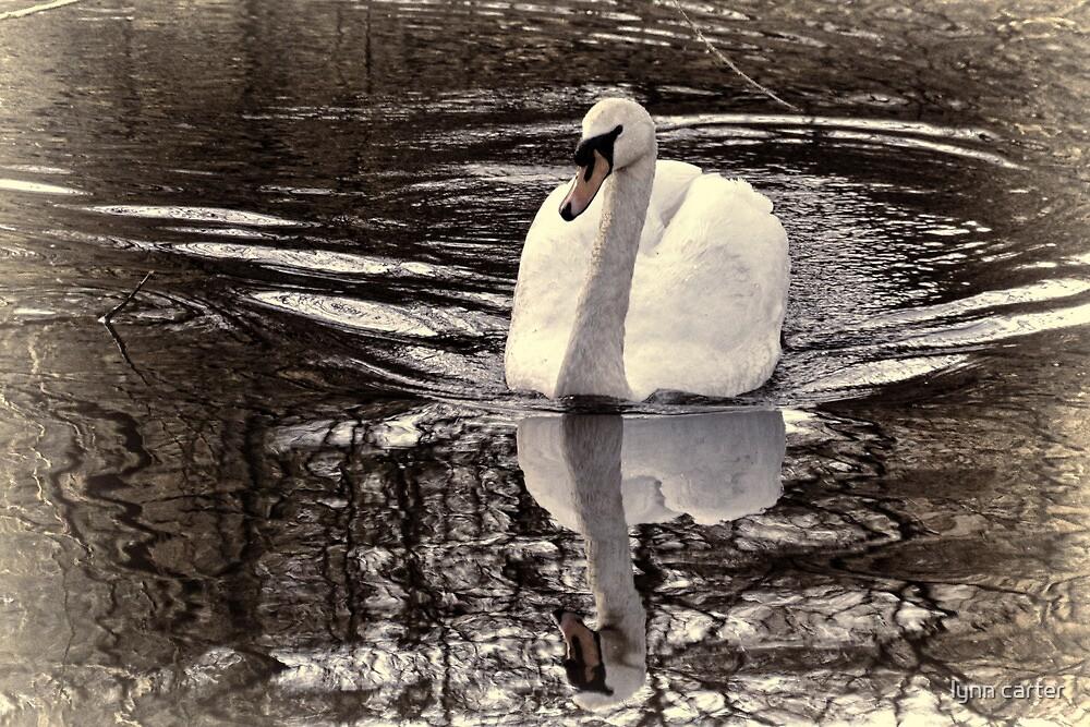Mirror Image by lynn carter