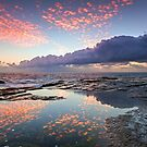 Speckled Dawn by Mark  Lucey