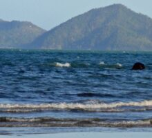 Dunk Island - from North Mission Beach Sticker