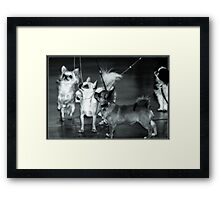 Circus of Toys  Framed Print