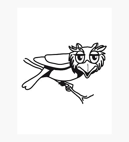 OWL bird uhu cool comic Photographic Print