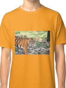 Don't look him in the eyes Classic T-Shirt