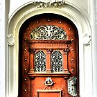 Beautiful Door  by ©The Creative  Minds