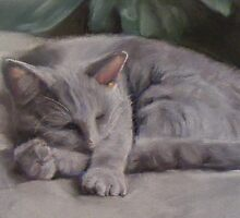 Russian blue cat, sleeping by pastelesta