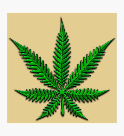 Weed Leaf Photographic Print
