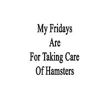 My Fridays Are For Taking Care Of Hamsters  by supernova23