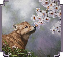 Wolf Pup and Flower Blossoms by csforest